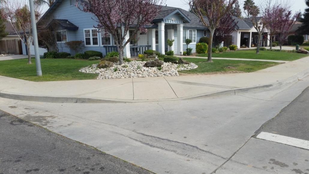 affordable tree services Clovis CA
