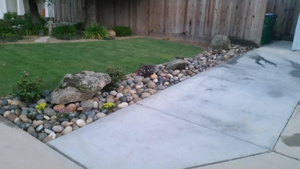 affordable tree services Fresno County CA