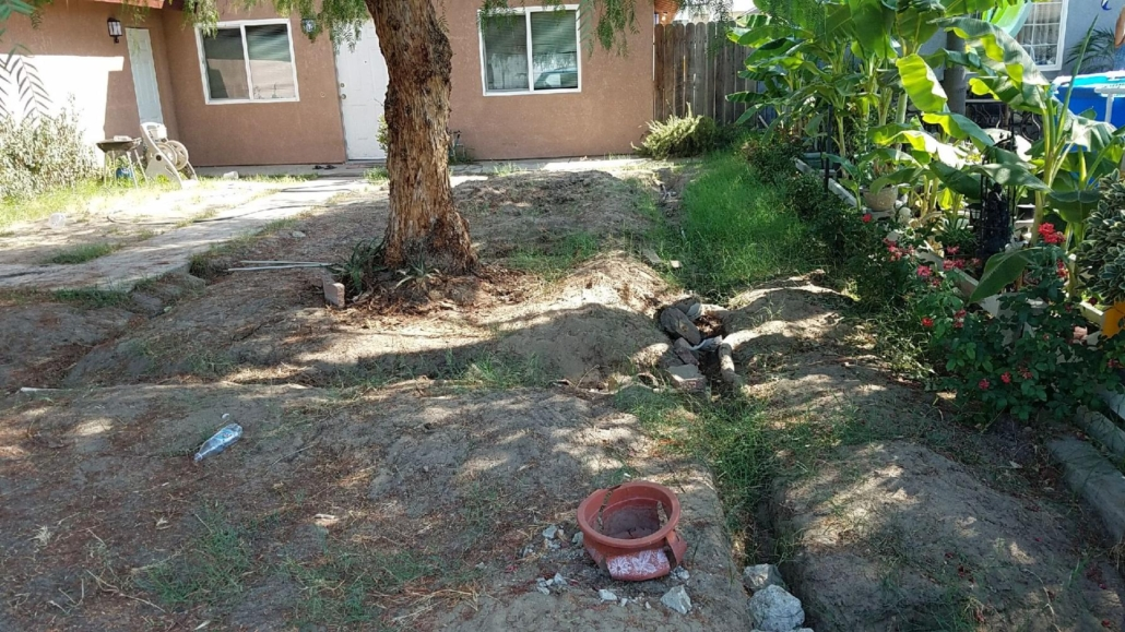 affordable tree services Madera County CA