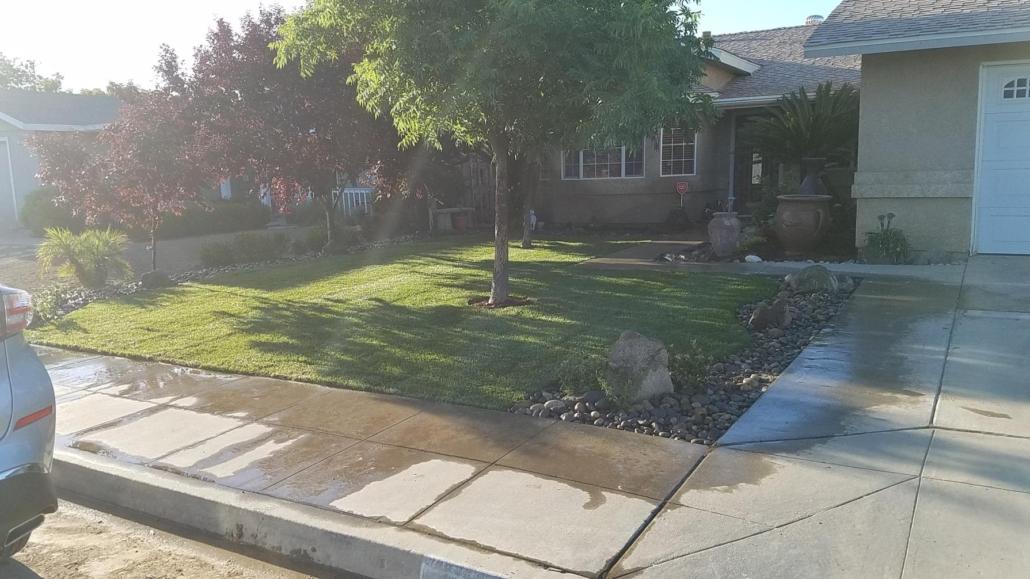 affordable tree services Kingsburg CA